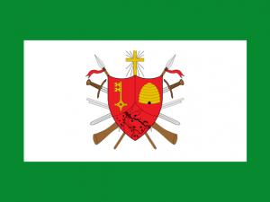 Bandera Magangué