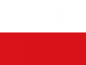 Bandera Natagaima (Tolima)