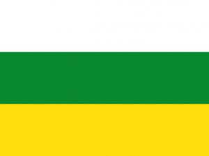 Bandera Norcasia