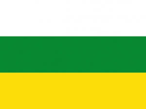 Bandera Palmira (Valle del Cauca)