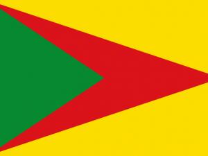 Bandera Paz de Ariporo