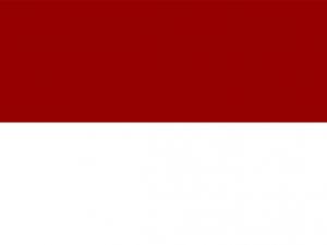 Bandera Pedro Muñoz (Ciudad Real)
