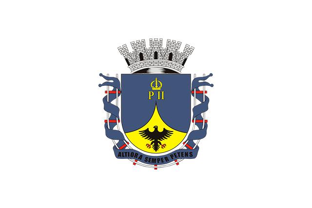 Bandera Petrópolis