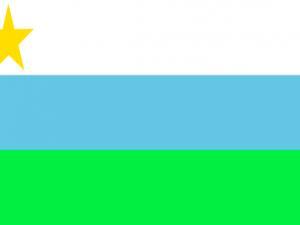 Bandera Puerto Guzmán