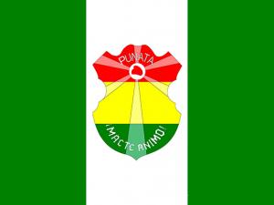 Bandera Punata