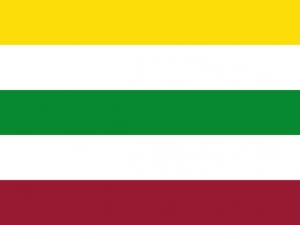 Bandera Purificación (Tolima)