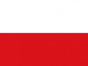 Bandera Rionegro (Antioquia)