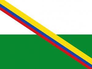 Bandera Rivera (Huila)