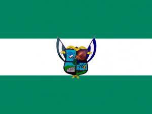 Bandera San José Villanueva