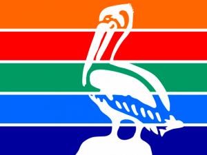 Bandera San Petersburgo (Florida)