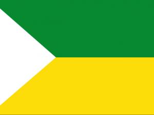Bandera San Vicente (Antioquia)