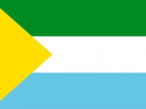 Bandera San Vicente del Caguán