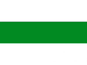 Bandera Santa Rosa de Cabal