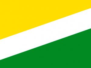 Bandera Santa Rosalía (Vichada)