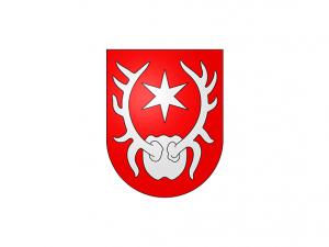 Bandera Sarnen