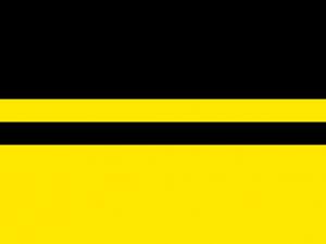 Bandera Schellenberg