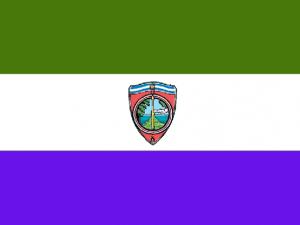 Bandera Sonsonate