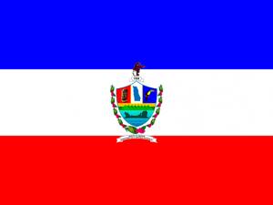 Bandera Tamanique