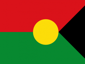 Bandera Trinidad (Casanare)