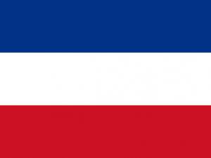 Bandera Valledupar