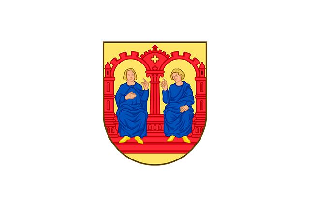 Bandera Viborg