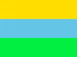 Bandera Villagarzón
