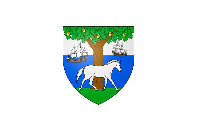 Bandera Ziburu